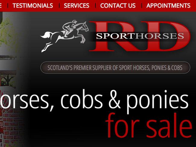 rd_sport_horses_portfolio